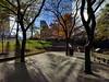 urban oasis (Ian Muttoo) Tags: img20161110092329edit toronto ontario canada gimp public park isabellavalancycrawfordpark shadow sunrise morning skydome rogerscentre fall autumn shadows