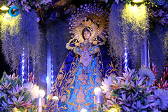 Our Lady of Sorrows of Turumba (Gibby™) Tags: grandmarianprocession manila philippines procession mary
