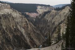 """Grand Canyon of the Yellowstone • <a style=""""font-size:0.8em;"""" href=""""http://www.flickr.com/photos/63501323@N07/30820587725/"""" target=""""_blank"""">View on Flickr</a>"""