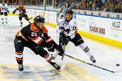 "Missouri Mavericks vs. Ft. Wayne Komets, November 12, 2016, Silverstein Eye Centers Arena, Independence, Missouri.  Photo: John Howe/ Howe Creative Photography • <a style=""font-size:0.8em;"" href=""http://www.flickr.com/photos/134016632@N02/30869276052/"" target=""_blank"">View on Flickr</a>"