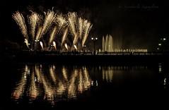 Fireworks in Tsaritsyno (Lyutik966) Tags: fireworks tsaritsyno funnylights light reflection festival holiday pond fountain moscow water park