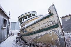 Left Behind (Shane Sadoway) Tags: stanton boat tuk tuktoyaktuk northwest territories ship wooden old abandoned rotting prow green white beached