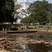 Anuradhapura: Ruvanvelisaya Dagoba reflected