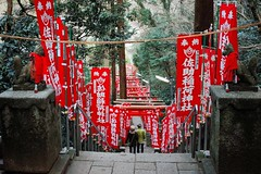 Jinja (Gai) Tags:    kamakura kanagawa japan  jinja   red   green  fox