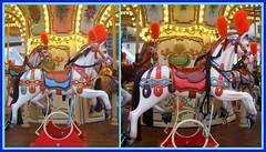 Mange de Nol (MAPNANCY) Tags: mange cheval plumet couleurs lumire