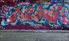 Nekah (Alex Ellison) Tags: neka nekah 1t tbf thebufffails ctr cityrollers mh mhb northlondon urban graffiti graff boobs halloffame hof