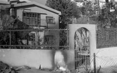 exakta_vx_kodak_triX_400_haifa_fire_26_nov_2016_013 (avitalnatanson) Tags: exakta fire damage kodak trix arson terror haifa carmel