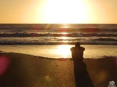 PC060195 (Tam Gugliermo) Tags: beach ocean nature sky naturaleza boy photography fotografia argentina crab animals dog wave dawn sun sunshine