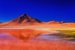 Laguna Colorada (Johnson Barros) Tags: ferias travel trip vacations viagem red sky blue flamingo bird peak landscape lake brow