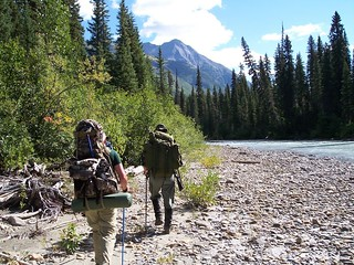 British Columbia Wolf Hunt & Big Game 22