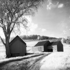 100459 04 (ndpa / s. lundeen, archivist) Tags: nick dewolf nickdewolf october bw blackwhite photographbynickdewolf 1959 1950s film 6x6 mediumformat monochrome blackandwhite vermont ruralvermont rural farm farmland infrared infraredfilm landscape hills tree trees sky clouds building buildings whitemountains house home road dirtroad