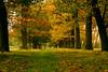 Stramproy, 23 oktober, Foto: M.Niellissen