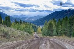 Teton Mountains and Yellow Stone Photography (Jagnoor-Photography) Tags: mountains yellow stone photography teton jagnoor