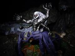 Draegloth Abomination (ridureyu1) Tags: toy toys actionfigure rpg dungeonsanddragons dd dungeonsdragons roleplayinggame arneson tsr wizardsofthecoast wotc toyphotography gygax drider draegloth draeglothabomination spidercentaur sonycybershotsonycybershotdscw690