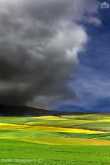 paesaggio di campagna, country landscape (paolo.gislimberti) Tags: southafrica fields agriculture campi sudafrica agricoltura coltivazioni countrylandscapes cultivations paesaggidicampagna