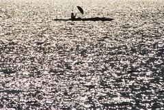 splendid isolation - Schirmherr (Scilla sinensis) Tags: autumn hamburg herbst canoe alster kanu höst windpower gegenlicht regenschirm windenergie fotosondag fs141005