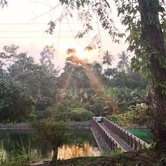 Sunset at Dolores Farm Resort (ToGa Wanderings) Tags: sunset square hotel philippines resort squareformat tropical province mindanao polomolok southcotabato doloresfarmresort iphoneography instagramapp