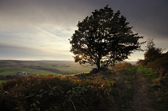 Final Light at Cheese Gate Nab (andy_AHG) Tags: autumn sunset england rural walking outdoors evening countryside unitedkingdom britain yorkshire farming hills fields hepworth pennines rambling barnsley beautifulscenery southyorkshire britishcountryside cheesegatenab