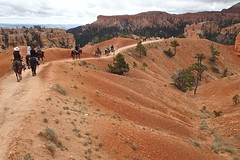 P9080213 (bluegrass0839) Tags: canyon national hoodoo bryce zion zionnationalpark brycecanyon nationalparks narrows hoodoos horsebackride parkthe