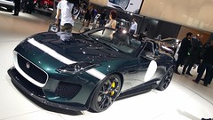 Jaguar Proyect 7 (4)