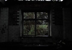 Pane (.Joe Cox) Tags: windows house detail abandoned home broken window nature glass weather wall dark photography sadness artwork sad dirty follow creepy fave chester dirt domestic photograph forgotten worn vandalism faceless smashed pane domesticity disowned alevelphotography