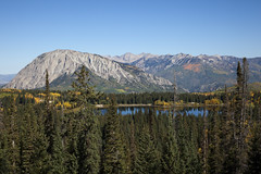 Ragged and Wild (Jeff Mitton) Tags: mountains colorado fallcolors wilderness aspen quakingaspen wondersofnature raggedswilderness marcellinamountain lostlakeslough earthnaturelife