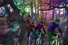 Colourful Downhill (benjamin.seeley) Tags: bike sport spectrum coursework onyerbike