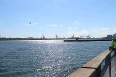 IMG_4665 (ShellyS) Tags: nyc newyorkcity waterfront manhattan rivers eastriver helicopters choppers