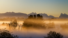 Looking to the East.... (Howard Ryder) Tags: mist fog sunrise morninglight nikon cascades pacificnorthwest pugetsound washingtonstate tamron everett cascademountains snohomishcounty morningglow d610 cascadefoothills tamron7002000mmf28divcusd