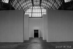 Le Grand Palais (GencivedeTruie) Tags: blackandwhite france art architecture space exhibit exposition volume aris artdco legrandpalais monumenta