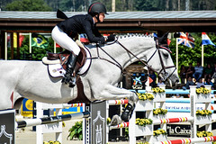 Georgina Bloomberg riding Juvina (yasminabelloargibay) Tags: horse caballo cheval grey mare cavalier cavallo cavalo pferd equestrian stallion equine csi hest paard showjumping hpica horserider gelding showjumper equestrianism equitacion hipismo