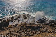 Hawaiian blow hole (THE SMOKING CAMERA HeRvEy BaY davefryer) Tags: vacation usa holiday hawaii hole blow hawaiian honolulu