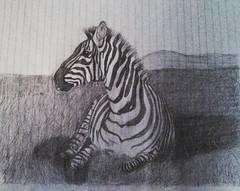 Dibujo (antonioosorio1) Tags: zebra dibujo