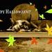 Happy+Halloween