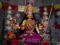 DSCN0511 (ankit10217) Tags: pune durga shakti parvati ambika sati bhairavi katyayani bhuvaneshwari chinnamasta navdurga mahagauri kaalratri siddhidatri kushmanda chandraghanta dhumavati skandamata brahmacharini vaishnomaa shailaputri durgapuja2014 navratri2014 ankitahuja shivaradni bhavaani navratridurgapuja2014