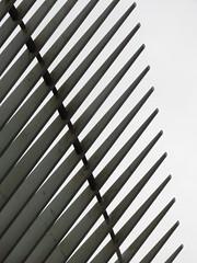 Calatrava #6 (Keith Michael NYC (1 Million+ Views)) Tags: nyc ny newyork manhattan worldtradecenter calatrava