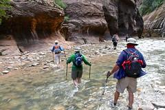 IMG_1948 (bluegrass0839) Tags: canyon national hoodoo bryce zion zionnationalpark brycecanyon nationalparks narrows hoodoos horsebackride parkthe