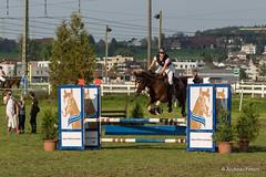 DSC06677_s (AndiP66) Tags: horse oktober macro sports sport schweiz switzerland mark sony nevada luzern sp ii di if alpha tamron concours 77 pferd 70200 equestrian derby f28 ld horsejumping 70200mm wettbewerb 2014 springen eschenbach kantonsolothurn inwil reithof springreiten cantonsolothurn stleodegar wolhusen andreaspeters pferdespringen grueb martinameyer 77m2 a77ii ilca77m2 77ii slta77ii