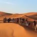 Sunrise Dunes of Merzouga_8259