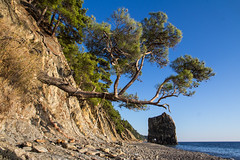Sail Rock (cat_collector) Tags: rock landscape blacksea canon60d canonefs1585mmf3556isusm