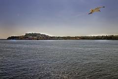 Isola Procida (Wolfgang.Grilz) Tags: capri napoli positano ischia procida amalfi sorrent neapel costieraamalfitana amalfikste golfvonneapel golfvonsorrent