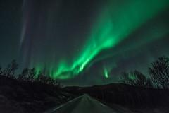 Northern light over Kvalya, Troms. (Per Ivar Somby) Tags: auroraborealis troms nordlys kvalya northernlight finnvikdalen