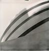 Goog (davebias) Tags: nyc polaroid sx70 guggenheim impossible polaroidweek