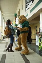 Biz E. Beaver (Babson College) Tags: mascot biz babsonpark bizebeaver babsonbeaver