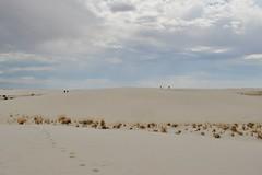 0U1A8827 White Sands National Monument - sand dunes (colinLmiller) Tags: newmexico us nps nationalparkservice 2014 doi whitesandsnationalmonument departmentoftheinterior