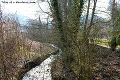 CALW - HIRSAU (Tales of a Wanderer) Tags: black forest germany deutschland selva alemania schwarzwald negra calw hirsau