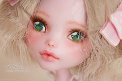 DSC_2519 (necofenix) Tags: pink monster high doll ooak lolita custom monsterhigh draculaura draculora