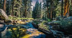 Escape (TI_in_Yosemite) Tags: california yosemitenationalpark nikond600 gangstalking photomatixpro4 gimp28 workplacemobbing colorefexpro4 communitybasedstalking nikcollection lightroom56 tamron2470f28divcusd