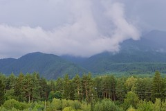 The Pirin Mountains (mmalinov116) Tags: mountain pirin bulgaria   forest fog mist green nature view