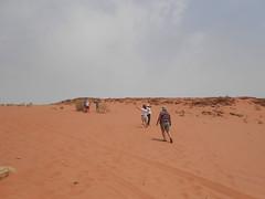 Wadi Rum (javier_hdez) Tags: jordania desierto wadirum fotos fotografas turismo viajes viajar can pelculas marte mars 4x4